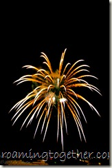 Harrison Township Fireworks