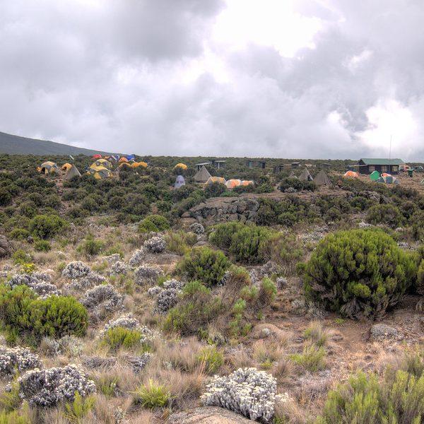 Kilimanjaro Extras