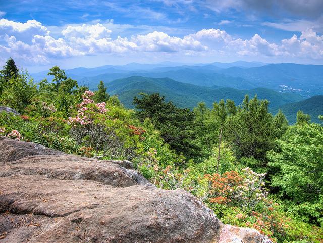 Graybeard Trail - Montreat, North Carolina
