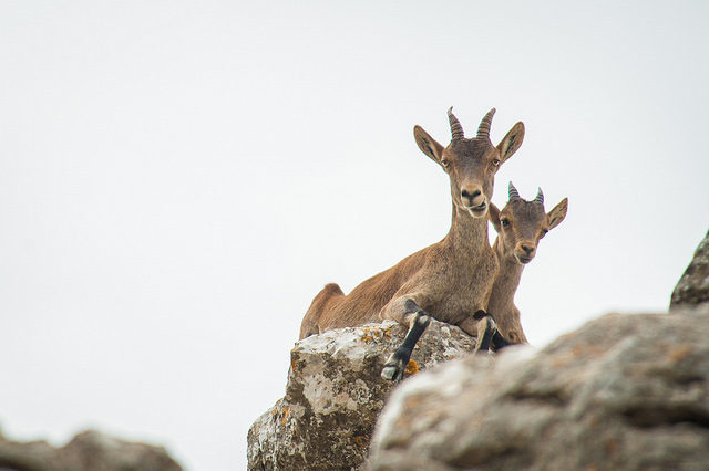 2015.09.21 El Torcal Natural Park